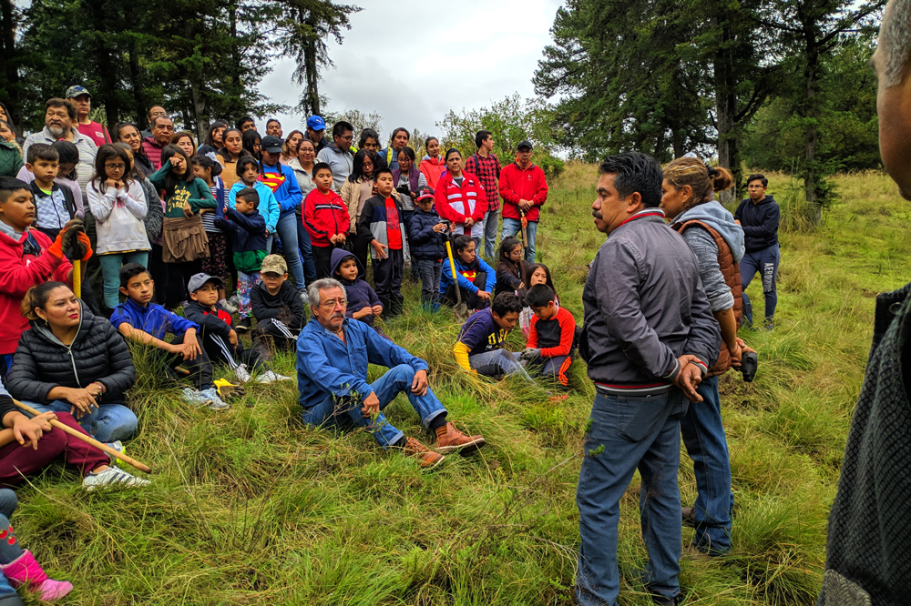 Comunidad Maderista de IMM Centro sembró 200 arbolitos