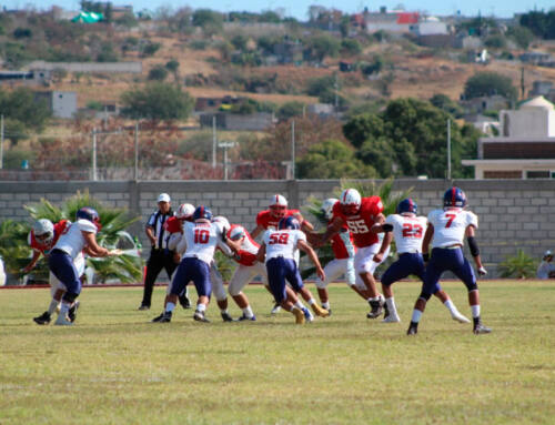 Tigres Blancos de Americano derrotan a domicilio a Mandriles Stratford